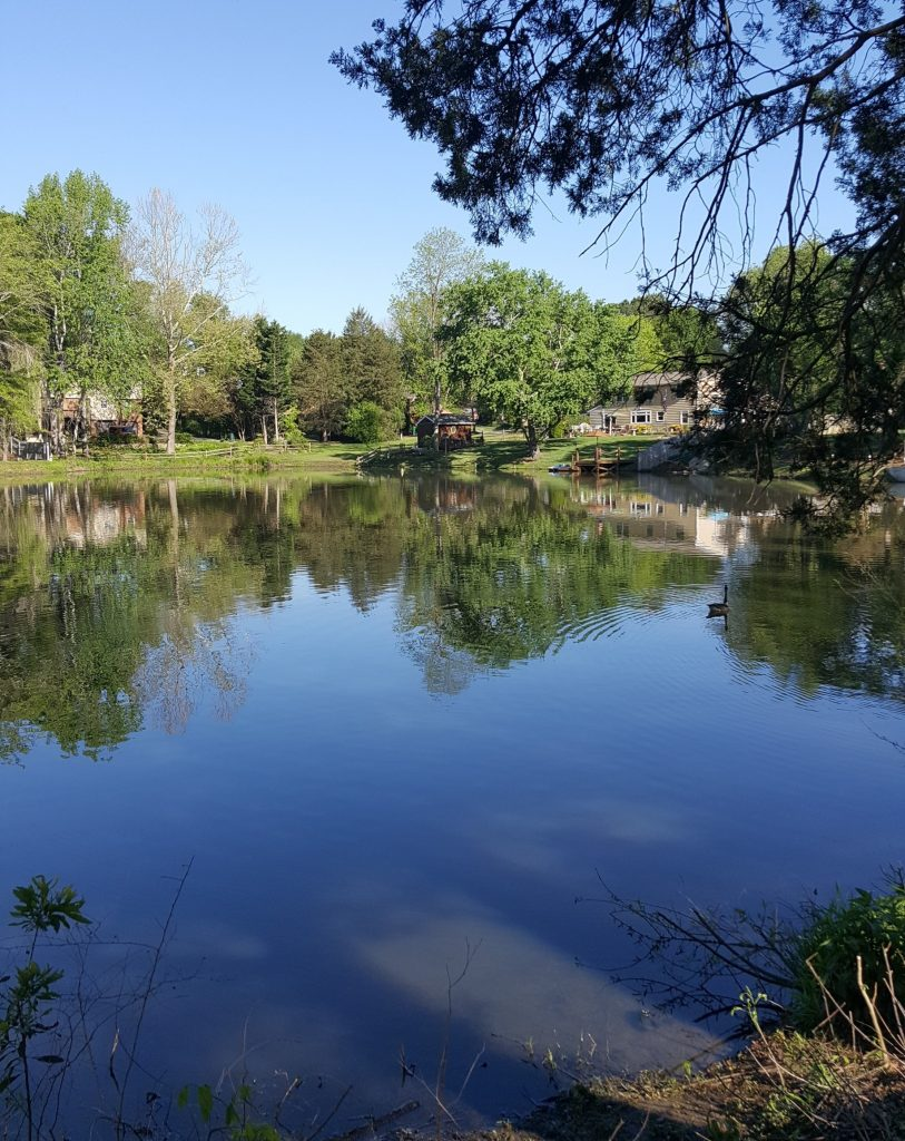 Stormwater armstrong glen for Stormwater pond design